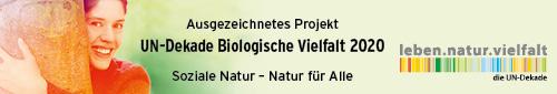 191019 028 UN Dekade Gewinnerlogo ausgezeichnetes Projekt 2020 500x85px rz01
